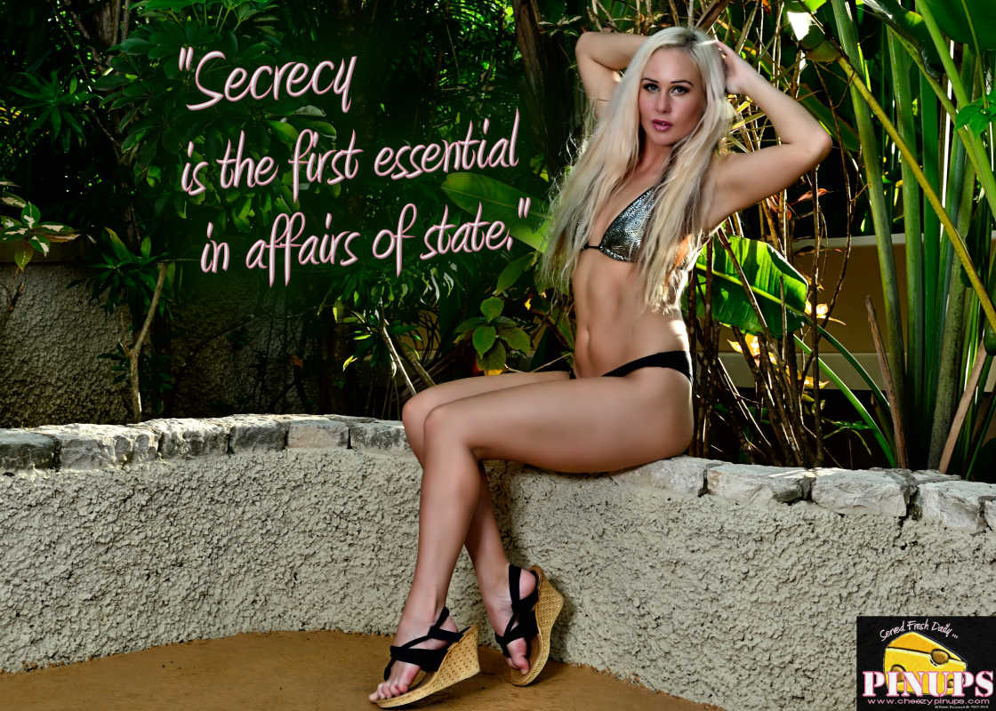 "Cheezy Pin up - September 9, 2015    ""Secrecy is the first essential in affairs of state."" - Cardinal Richelieu    Model: Arna"