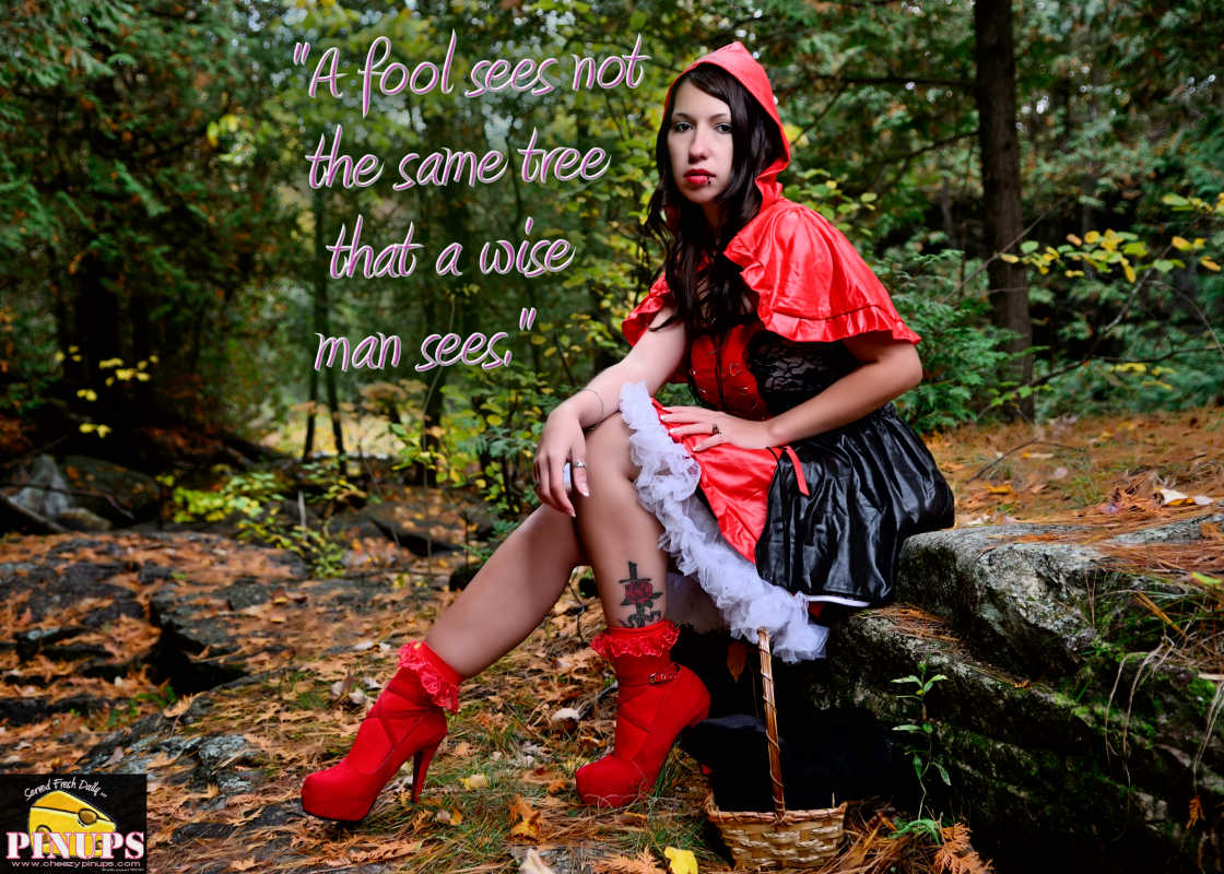 """Cheezy Pinup - November 27, 2016 """"A fool sees not the same tree that a wise man sees."""" - William Blake Model: Samiie"""
