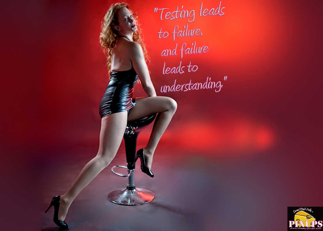 "Cheezy Pinup - June 17, 2017   ""Testing leads to failure, and failure leads to understanding."" - Burt Rutan Model : Emily"