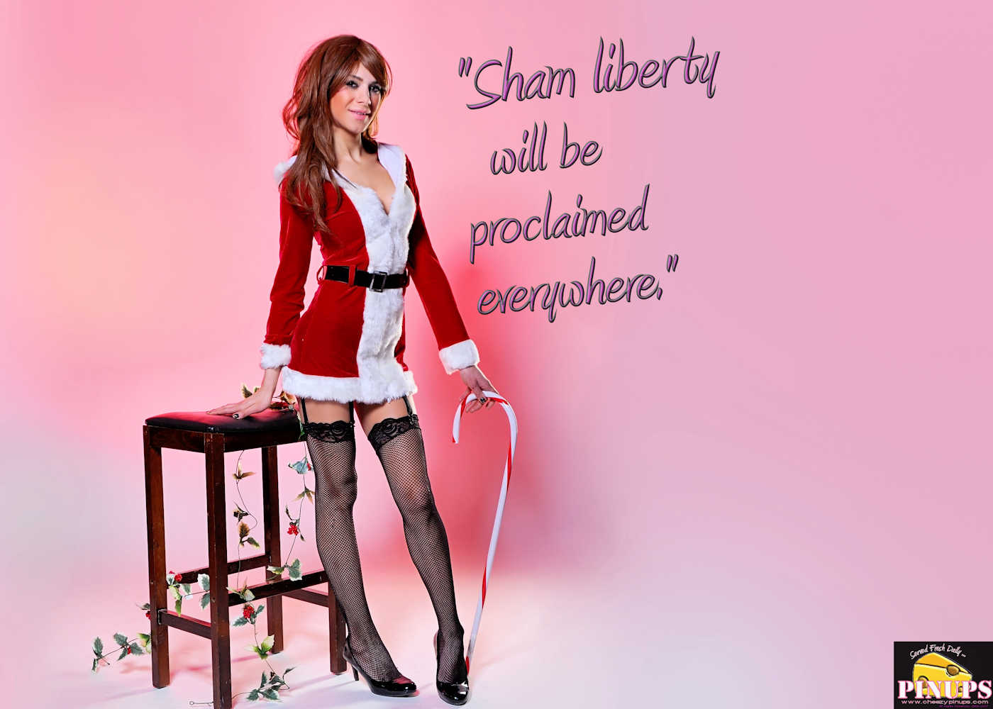 "Cheezy Pinup - December 14, 2017   ""Sham liberty will be proclaimed everywhere."" - Nostradamus Model: Laura"