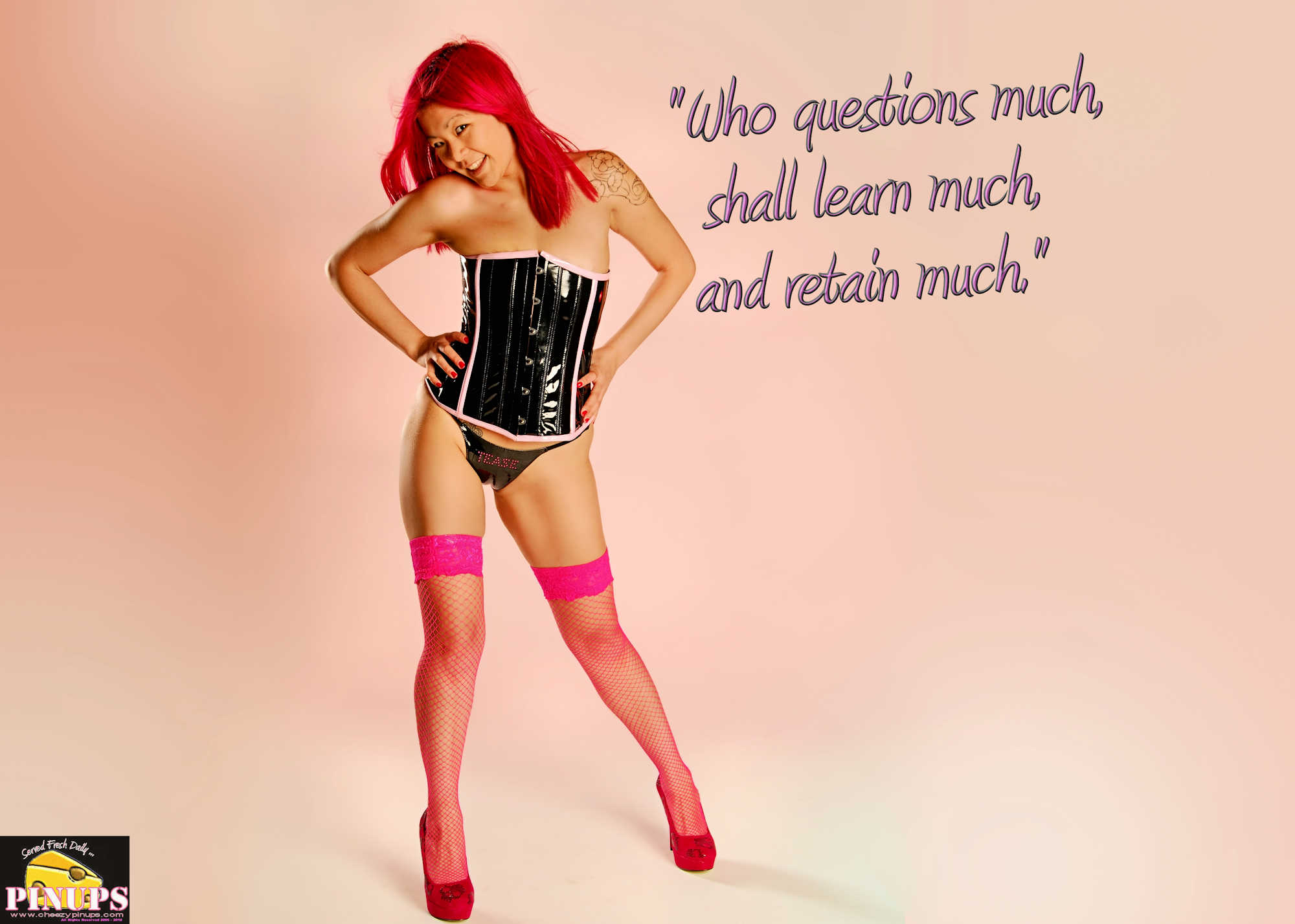 """Cheezy Pinup - January 21, 2018 """"Who questions much, shall learn much, and retain much."""" - Francis Bacon Model: Aimee"""