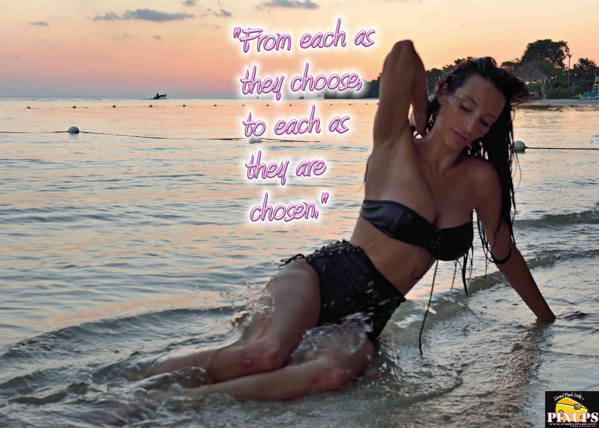 """Cheezy Pinup - November 16, 2018   """"From each as they choose, to each as they are chosen."""" - Robert Nozick Model: @hemigirl"""